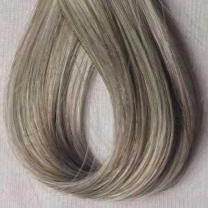 Gray Hair Perceptions